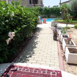 garden -1